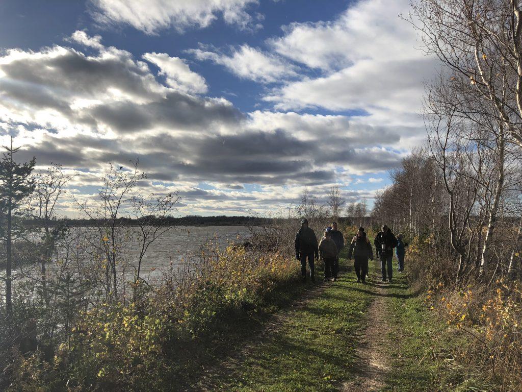 trail_hiking